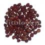 Боярышник кроваво-красный (плоды)