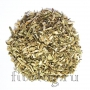 Болиголов пятнистый (трава)