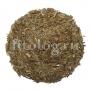 Ландыш майский (листья)