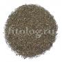 Укроп пахучий (трава)